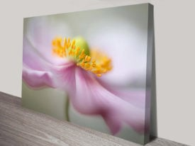 Pink Petals Floral Picture canvas