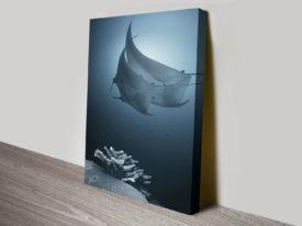 Sonata Underwater Deep Sea Canvas Print