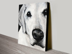 Sparta The Labrador II Prints On Canvas