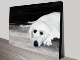 Xena The Labradoodle II Canvas Painting Print