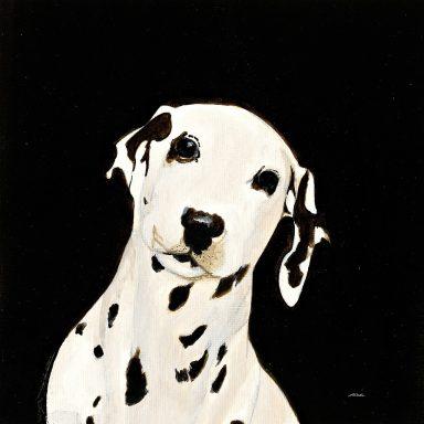Dakota Patsy Ducklow canvas Picture Art Australia