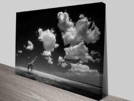 cloudy giraffe canvas wall art photo prints cheap