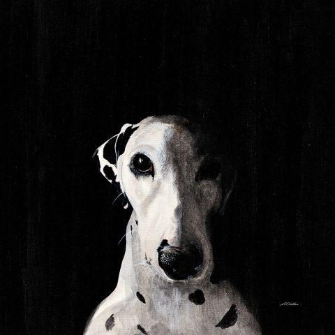 Dalmatian Dog Painting Print by Patsy Ducklow Australia