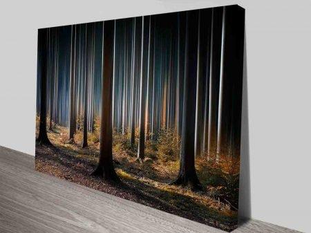 the still forest wall art canvas print