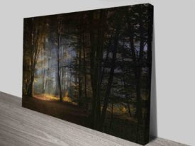 fairy tale forest cheap online art prints australia