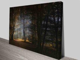 fairy tale forest cheap online art prints australia