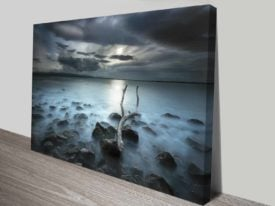 driftwood dream custom photo print online