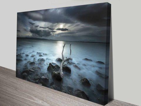 driftwood dream custom photo print online