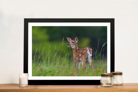 Deer Fawn Art Photographic Print Framed Wall Art