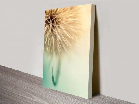 dandy dandelion floral artwork online print