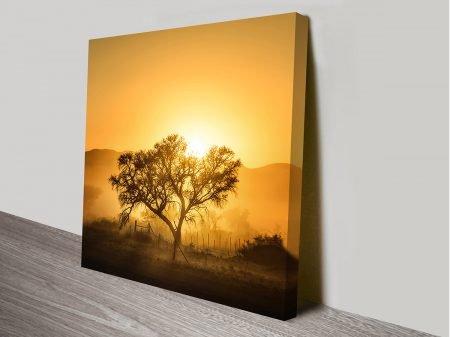 Tree Against Yellow Sunrise Photographic Ready to Hang Art Australia