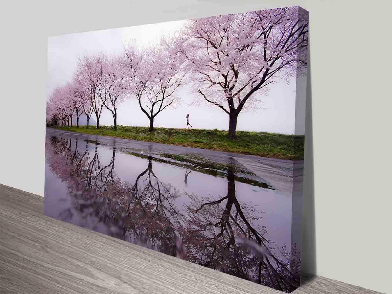 Cherry Blossom Lane Landscape Canvas Wall Art Ready To Hang Australia