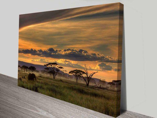 african skies wall art canvas print