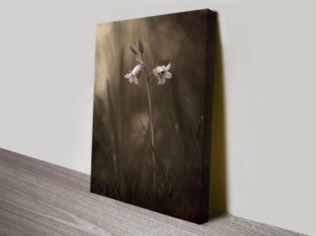 beautiful bellflower online floral print