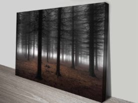Dark Wood Forest Atmospheric Photographic Ready to Hang Wall Art
