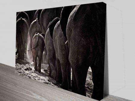 elephant herd wall art canvas print