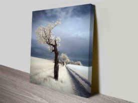 winter twisted tree custom wall art online