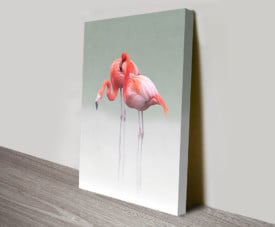 Pink Flamingos Pair Wildlife Wall Art Killara Sydney Australia