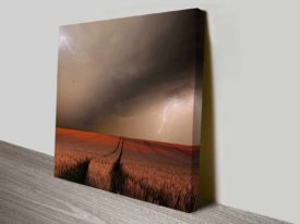 thundering wheat wall art canvas print