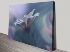 Floral Droplets Macro Photo Giclee Canvas Art