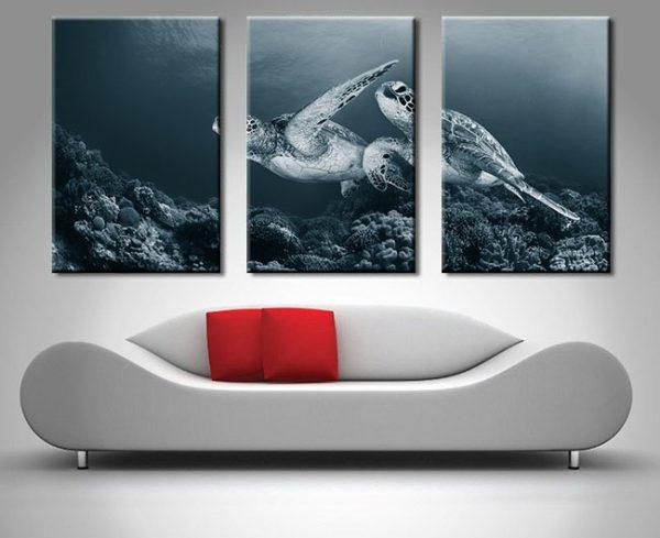 Turtles Monochrome Triptych Wall Art