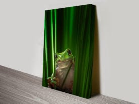 Green Tree Frog Chilling Amphibian Canvas Wall Art Australia