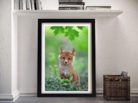 Cute Fox Cub Framed Wall Art Sydney