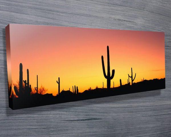 Buy Arizona Panoramic Art Cheap Online