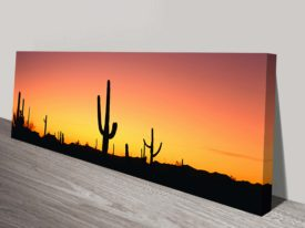 Arizona Panoramic Art Print