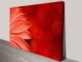 Petal Abstract floral canvas print