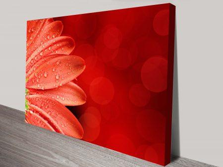 Petal Abstract floral canvas print