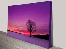 Dusk Hues Tree Sunset Canvas Print