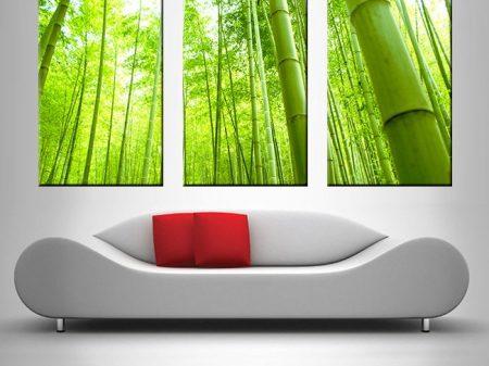 bamboo triptych wall art print on canvas australia