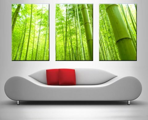 bamboo triptych wall art print on canvas australia