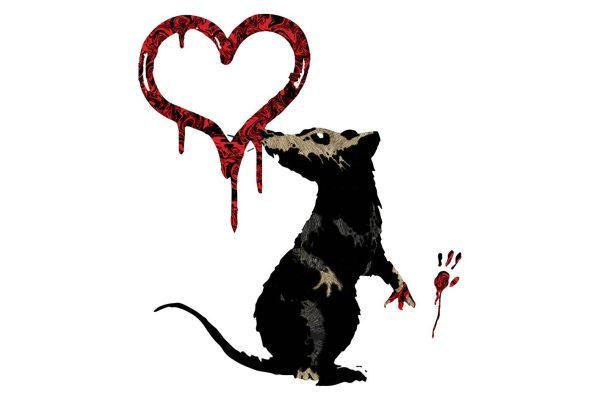 Banksy Rat Wall Picture Artwork