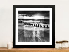 Beach Bones Focus Wreck Photographic Canvas Wall Art