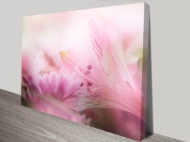 Blossoms II Floral Wall Art