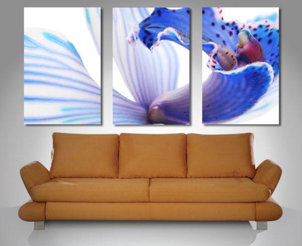 Blue Orchid Triptych Canvas Print