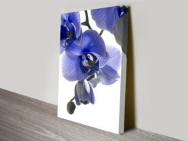 Blue Orchid Floral artwork
