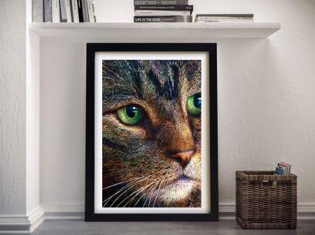Tabby Iris Scott Framed Wall Art