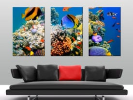 Magical Underwater Reef Triptych Canvas Art