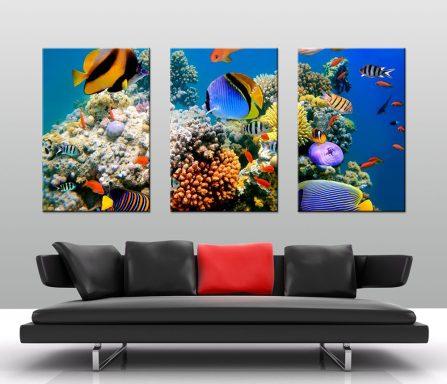 Magical Underwater Reef Triptych Canvas Art