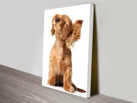 Cute Puppy Animal Wall Art on Canvas