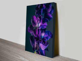 purple gladiola elena kulikova cheap print online