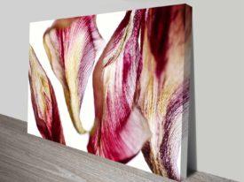 tulip flower petals elena kulikova custom print online
