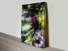 Evergreen Prints on Canvas