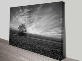 Field and Barn Black and White Art Print