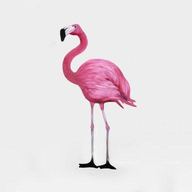 Vibrant Flamingo Cheap Wall Art