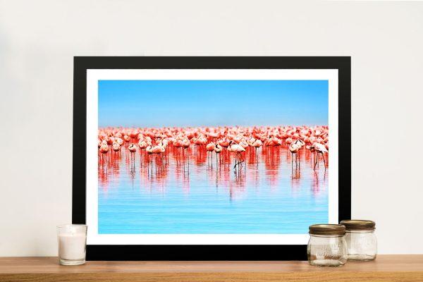 Flamingos Framed Wall Art Hobart Tasmania