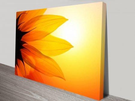 Flower of the Sun Wall Art